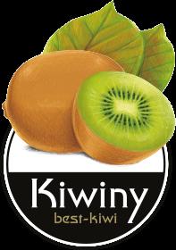 Kiwiny Store