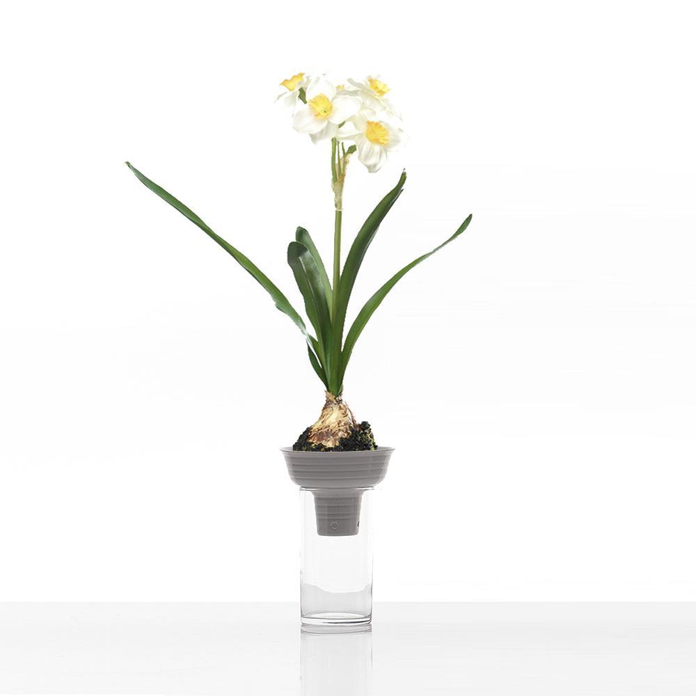 Vaso di design ufficio