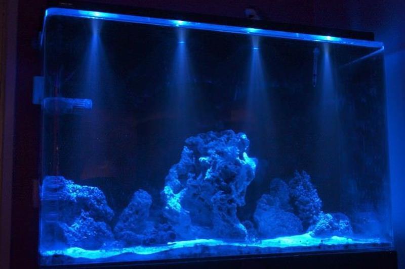 Illuminazione per acquario w tutto bianco acquario ha condotto l