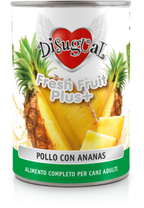 Disugual fresh fruit pollo con ananas