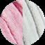 Paeonia - Pearl