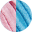 Peonia - Azzurro