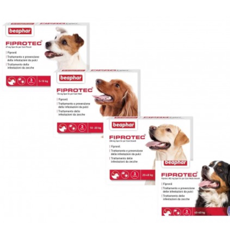 FIPROTEC SPOT-ON CANI 5-10 KG 3PIP