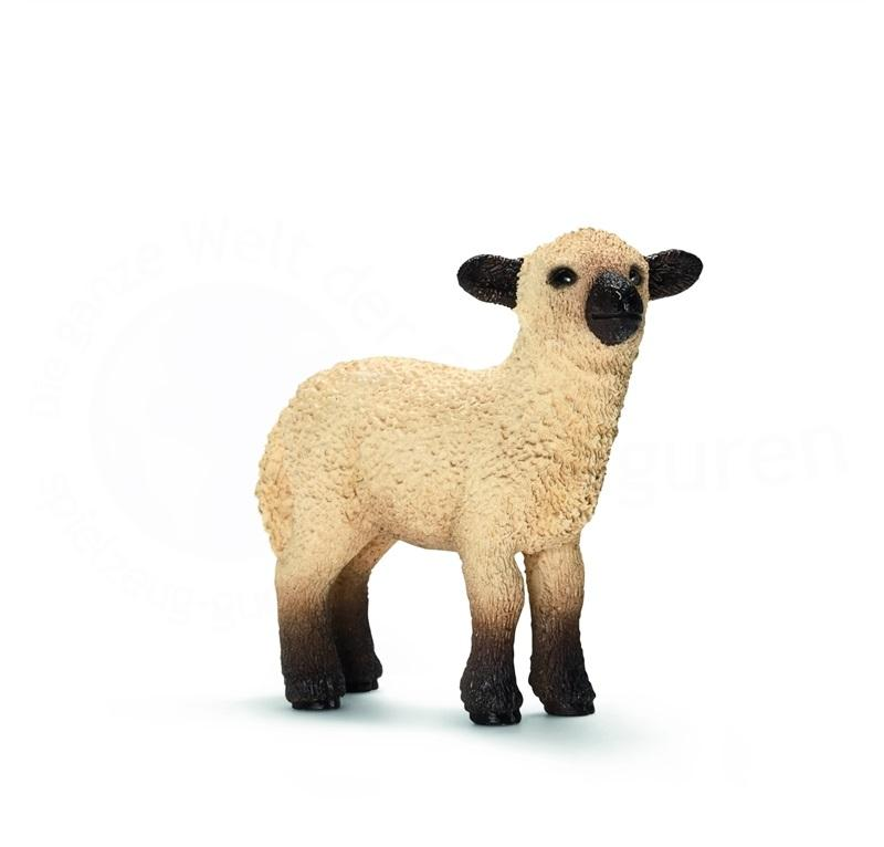 SCHLEICH FARM LIFE ANIMALI DELLA FATTORIA PECORELLA SHROPSHIRE 13682