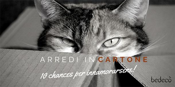 gatto in una scatola di cartone