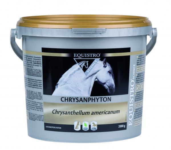 CHRYSANPHYTON EQUALITY  conf.2KG