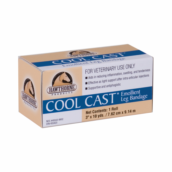 COOL CAST EQUALITY benda H 7,5cm