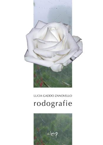 Rodografie