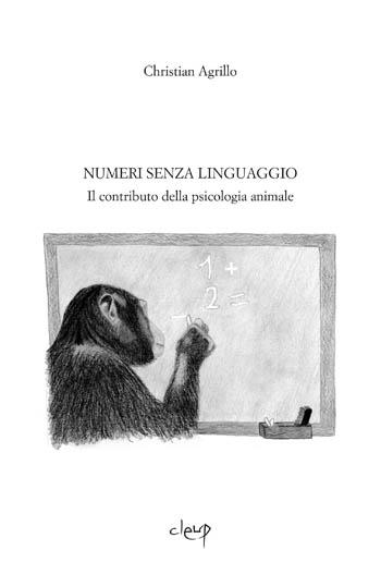 Numeri senza linguaggio