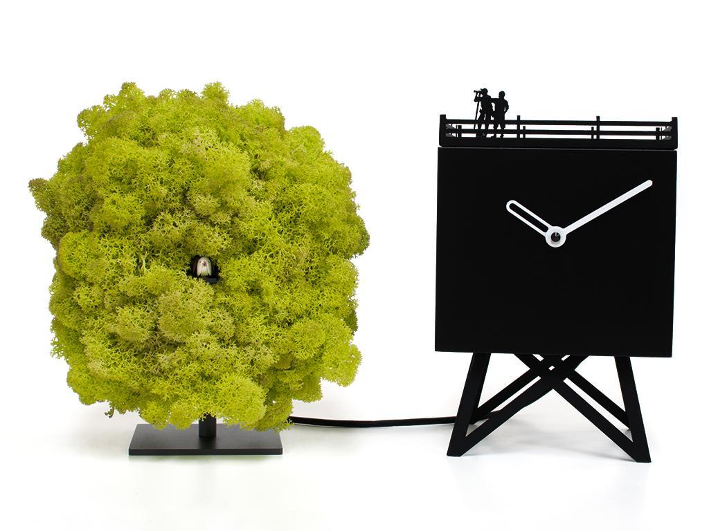 Orologio  Birdwatching Progetti