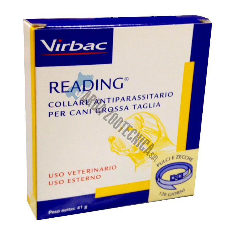 READING COLLARE PER CANI