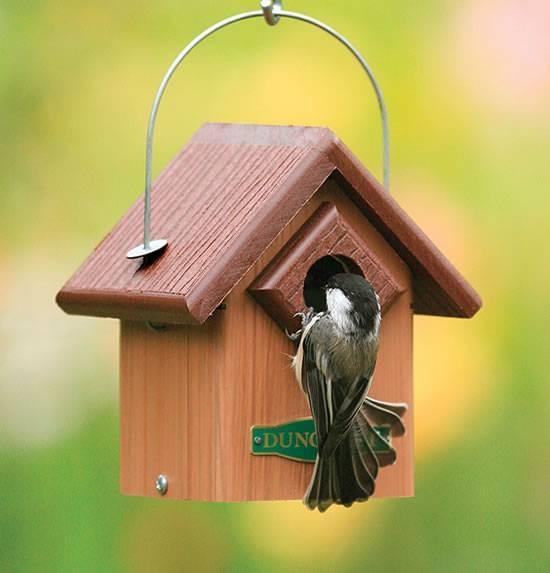 abbastanza Rifugi e Casette in Legno per uccelli | Re Leone Animal Store UJ72