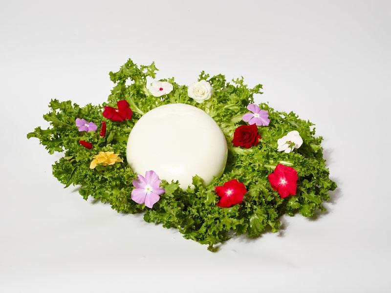 Mozzarella di Bufala Affumicata da 1 kg