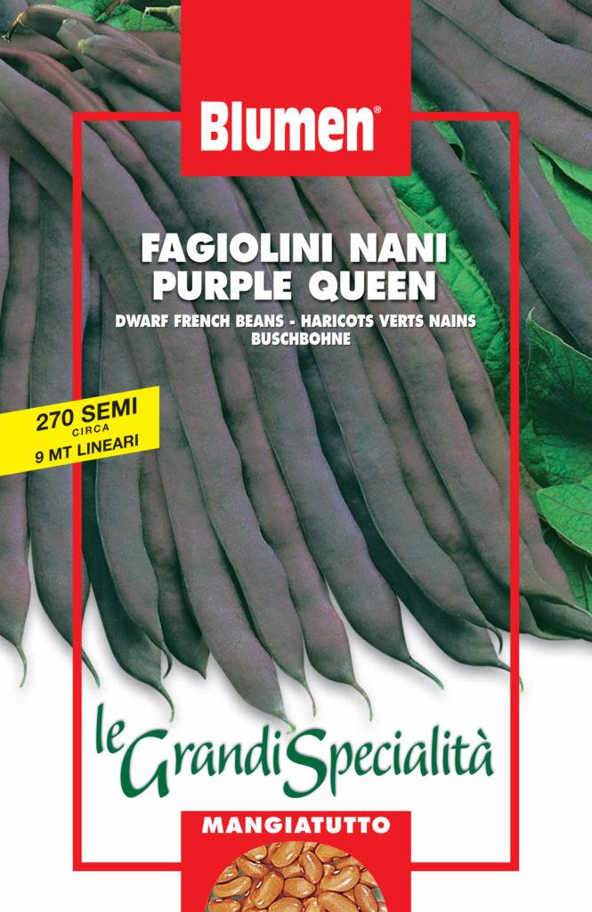 FAGIOLINI NANI PURPLE QUEEN
