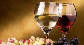 vini-valmusone
