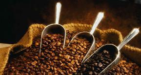 caffè-cemicaffè
