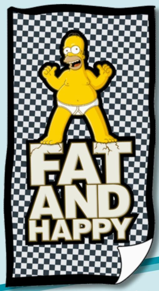 Simpson Homer Fat & Happy scacchi Telo Mare asciugamano 75 x 150 cm cotone