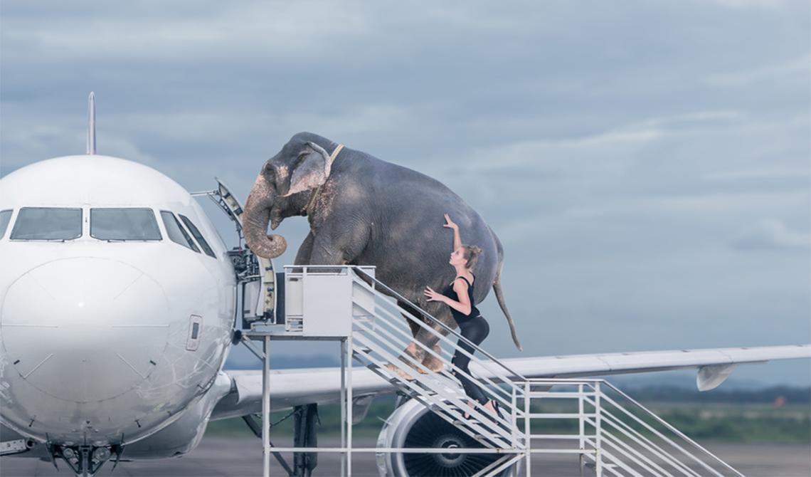 PESI e MISURE dei tuoi BAGAGLI per viaggiare in aereo senza problemi!