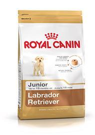 Labrador Retriever Puppy confezione 12kg