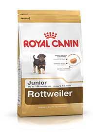 Rottweiler Puppy confezione 12kg