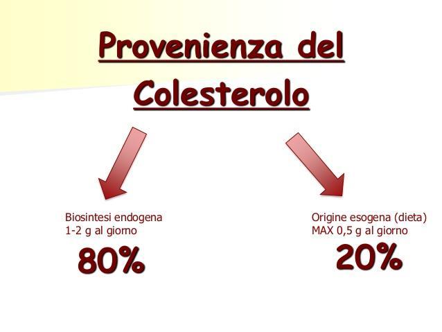 Qualiterbe - Provenienza del colesterolo