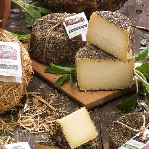 formaggio-stagionato-pecorino-fresco-misto-casciotta-urbino-dop-duca-marchigiano-fossa-sogliano