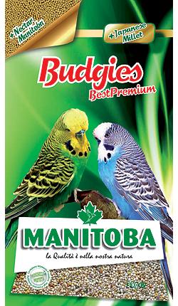Budgies Best Premium