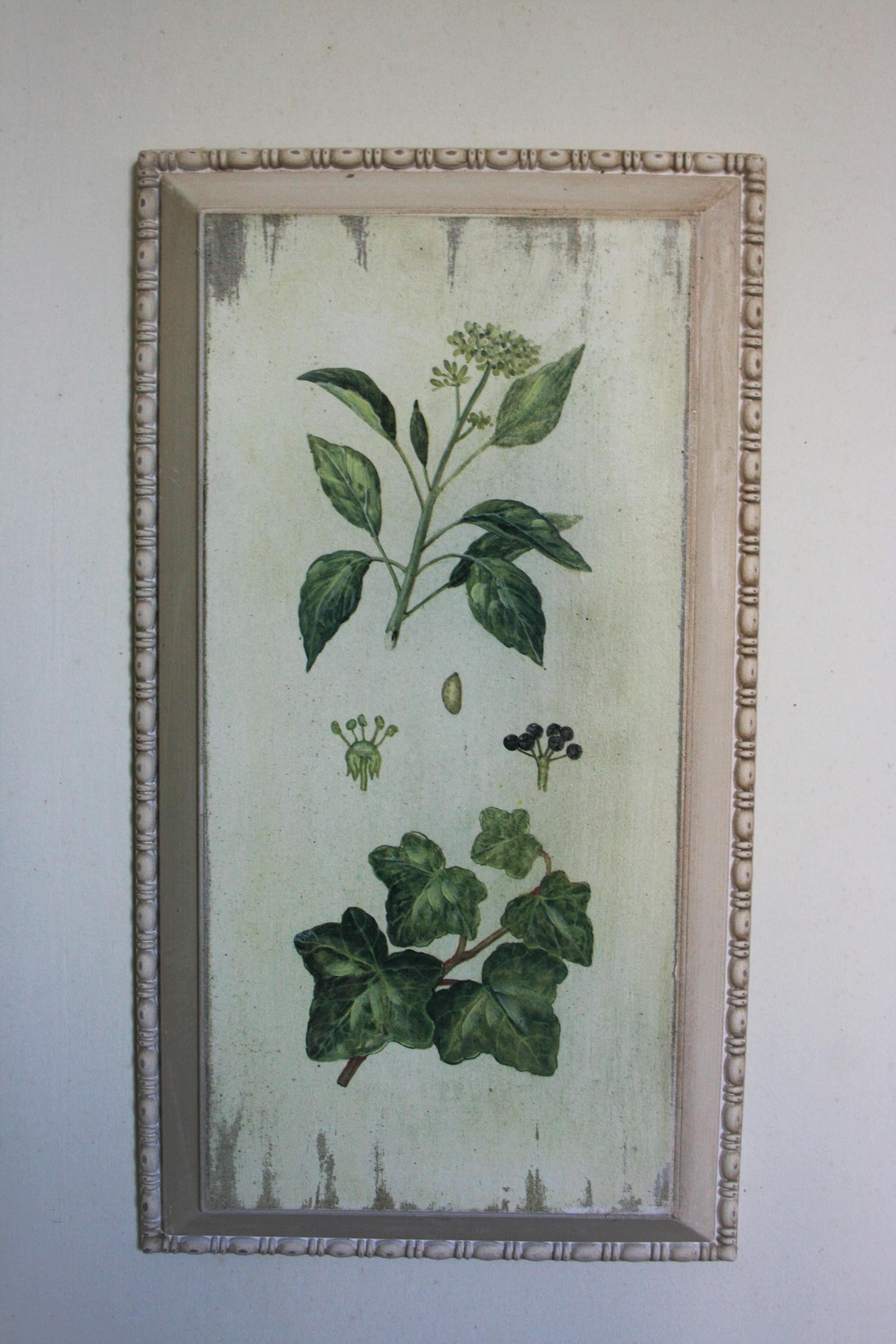 Quadro Botanica 4