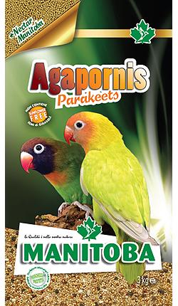 Agapornis Parakeets (con Nectar) 1kg