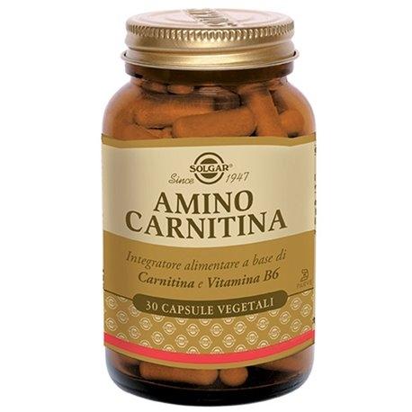 Amino Carnitina