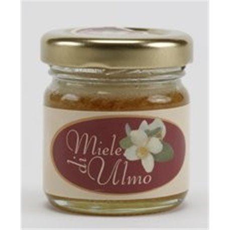 Naturetica Miele Ulmo 40 grammi