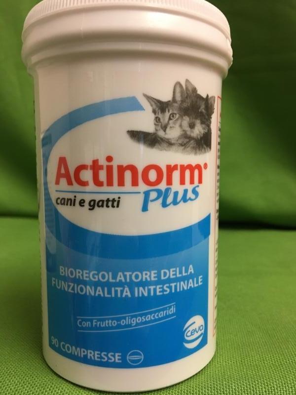 ACTINORM PLUS 90 compresse