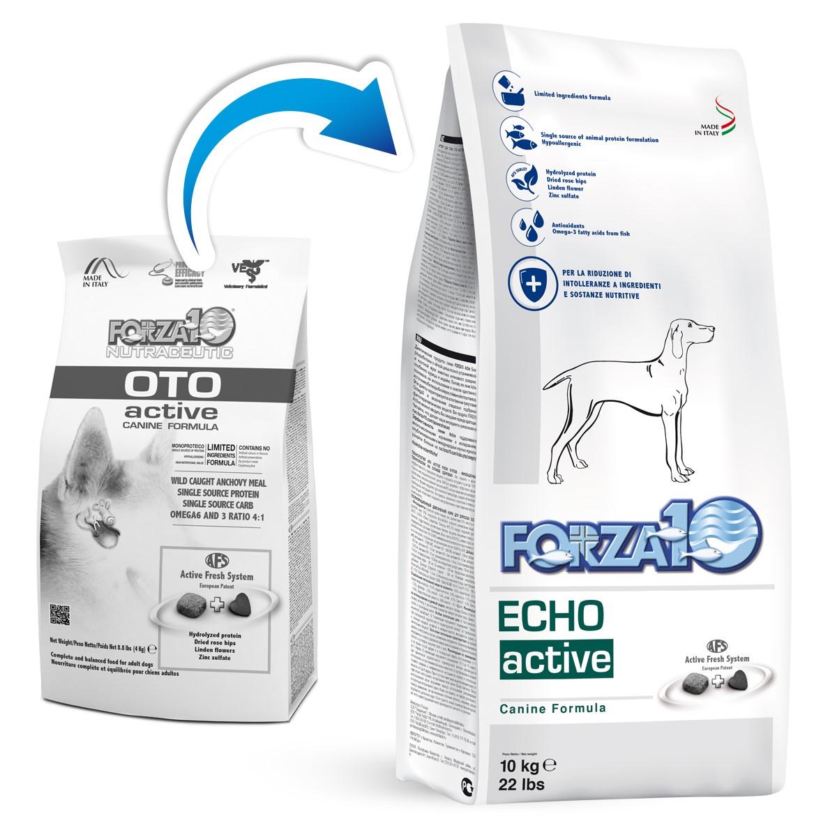 FORZA10 Echo Active