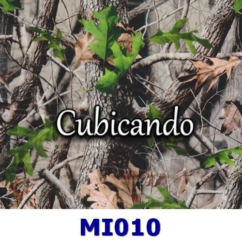 Pellicola per cubicatura Effetto mimetico foglie 10