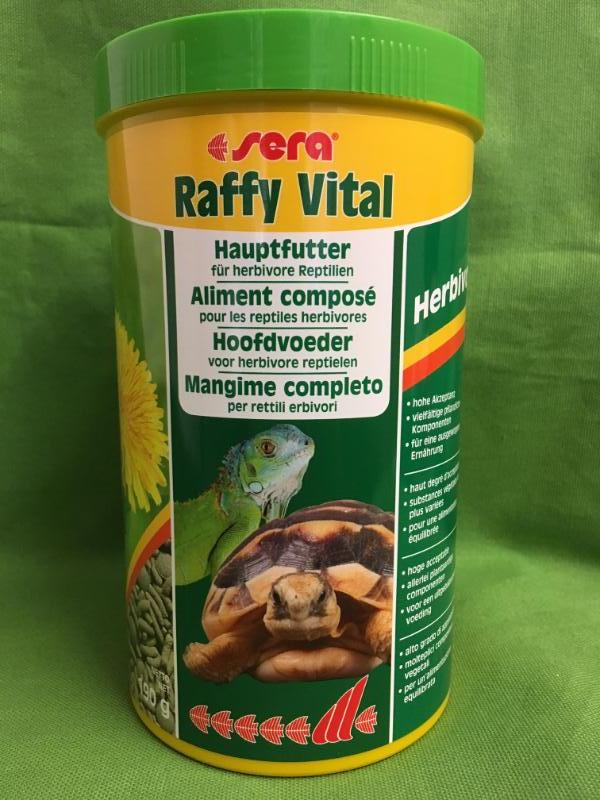 RAFFY VITAL