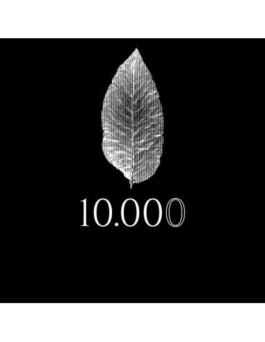 10.000 Aroma scomposto - Azhad Elixirs