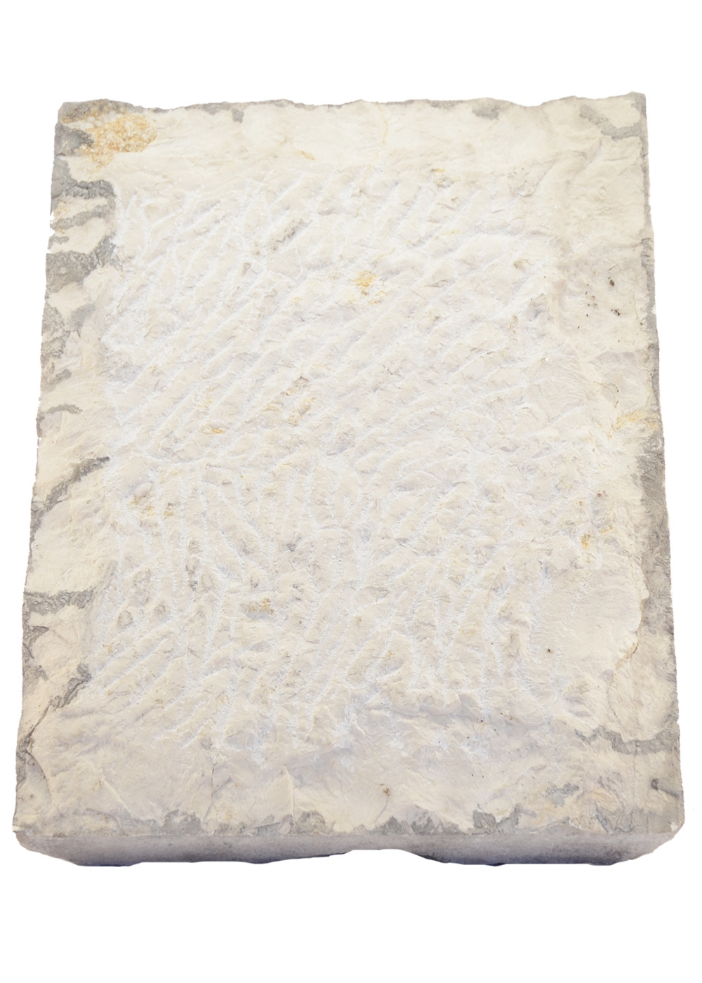 Best price Marble Relief With A Vintage | Italy2us.com