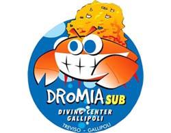 Dromia_sub