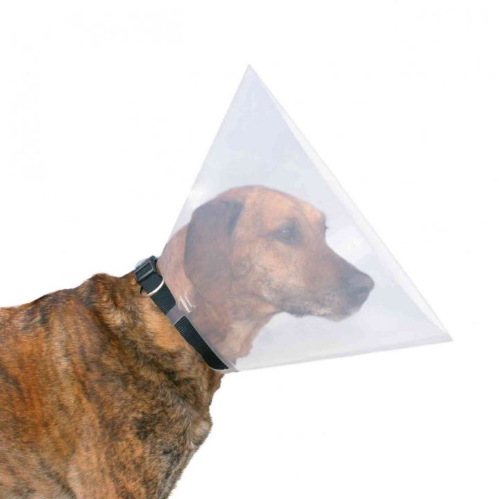 Collare Elisabetta per cani Trixie