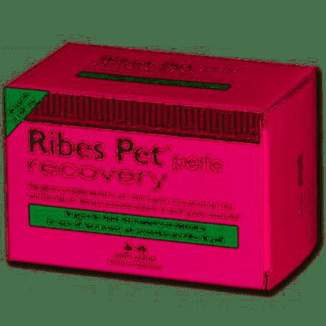 RIBES PET RECOVERY cane e gatto 60 perle Nbf lanes