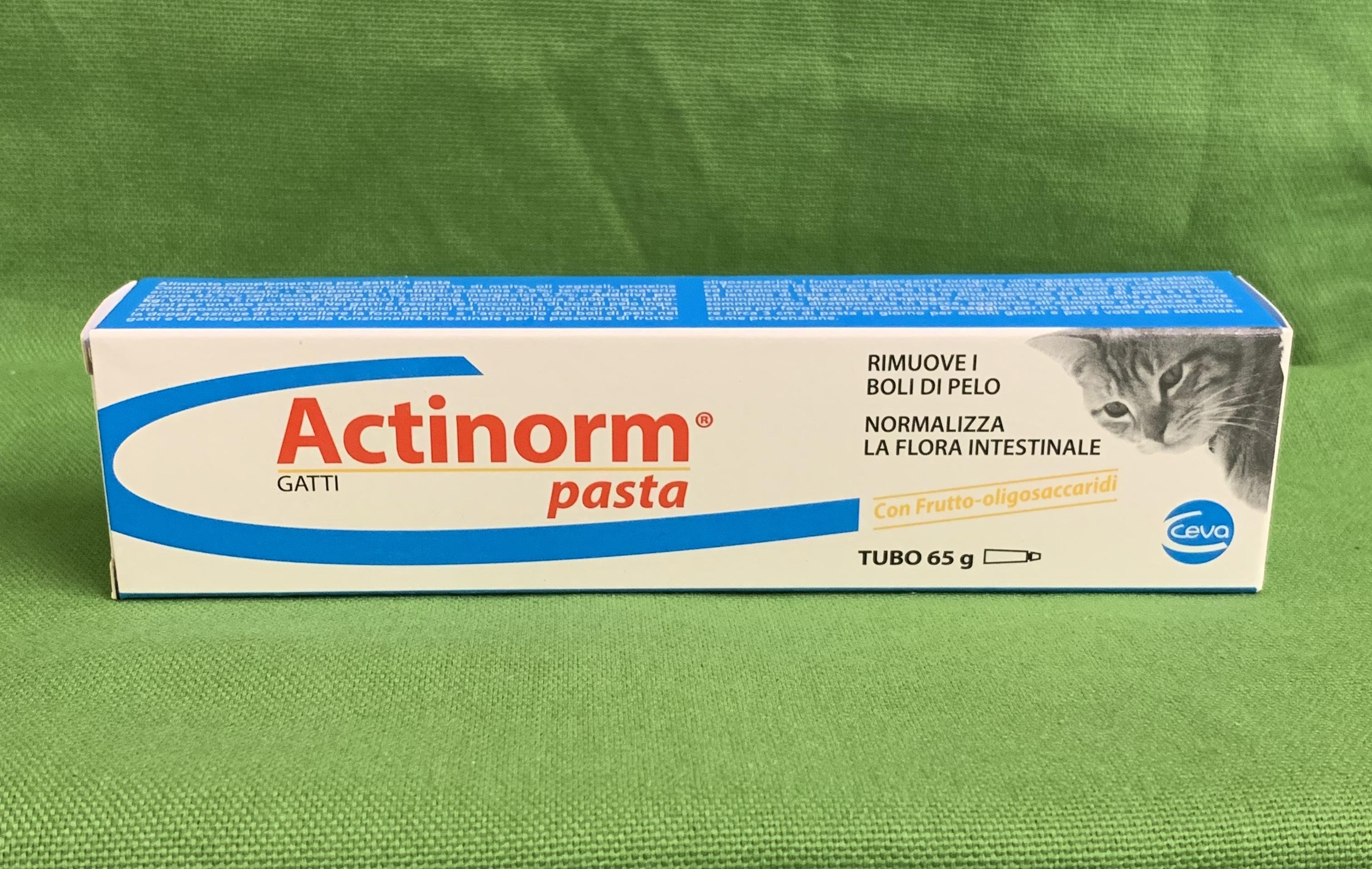 ACTINORM PASTA gatti 65gr