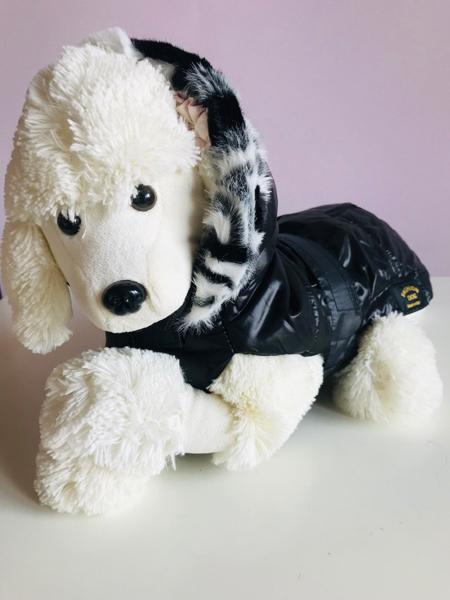 Fashion Dog giubbino imbottito Nero Tg 33