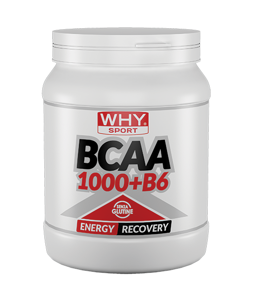 WHY SPORT BCAA 1000 + B6