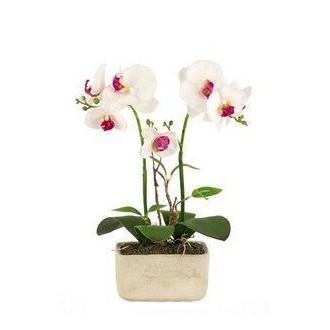 Vea Pianta Orchidea 42 cm Piantina Fiori Finti Per Arredare Casa Con Vaso Decorato Bianco