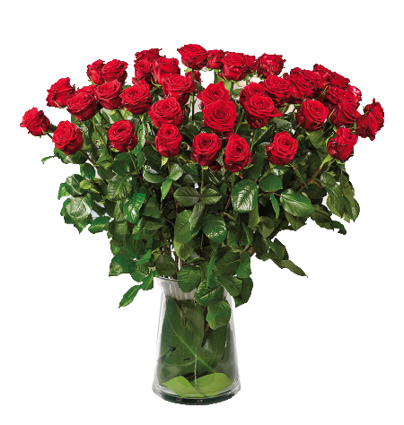 Mazzo 50 rose rosse € 249,00