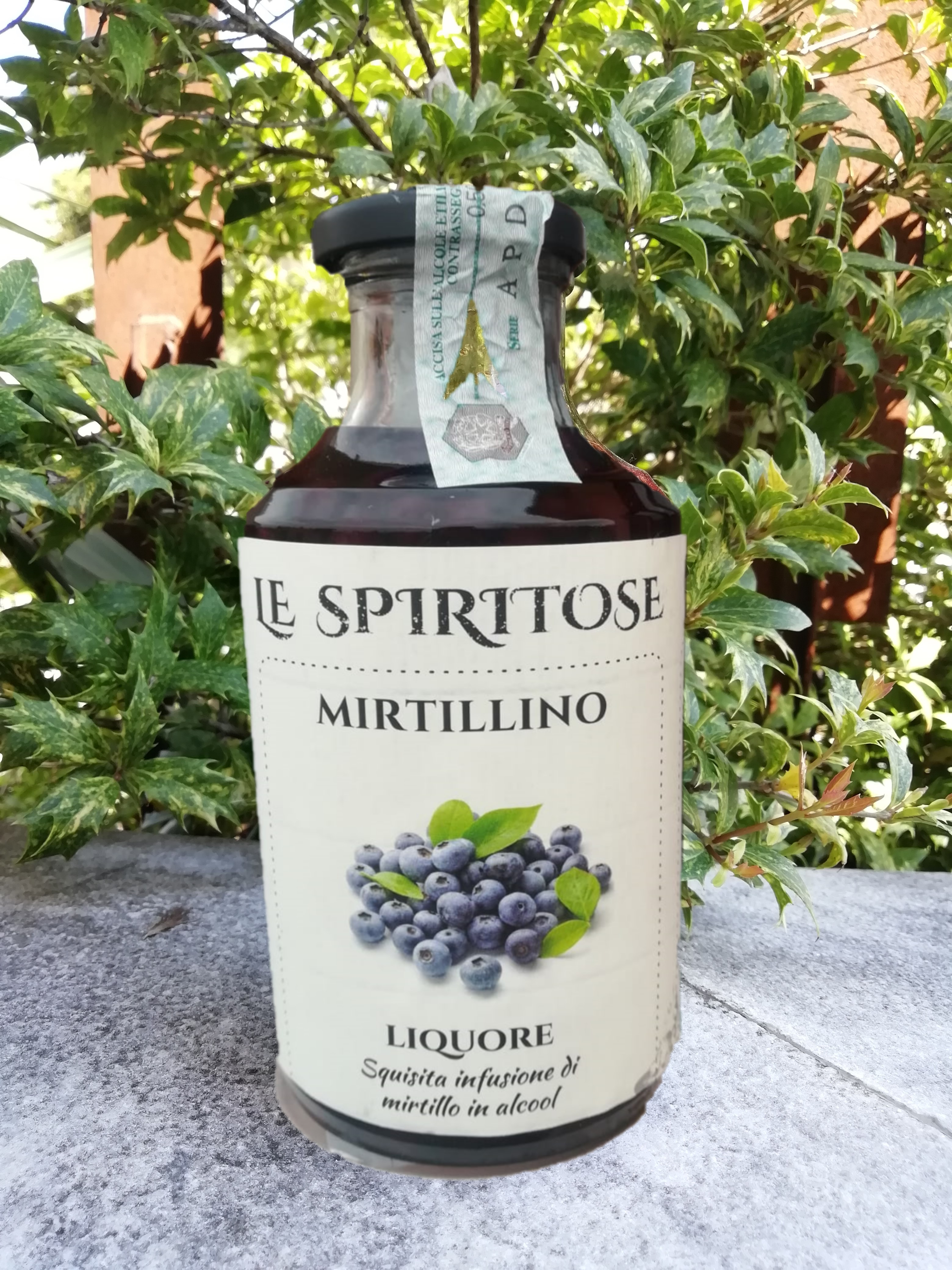 Grappa ai Mirtilli - 50cl
