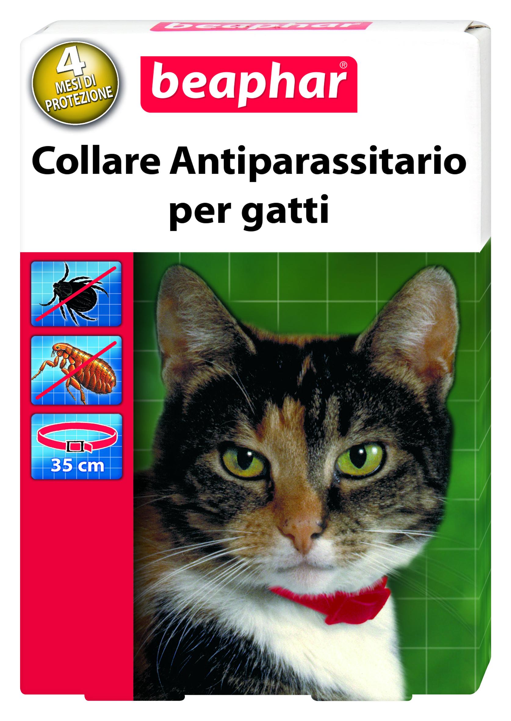 Collare antiparassitario per gatti (pulci,zecche)