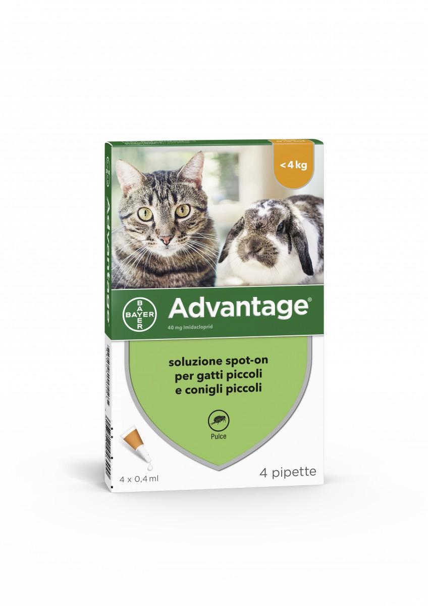 Bayer ADVANTAGE 40 soluzione spot-on per gatti piccoli e conigli piccoli