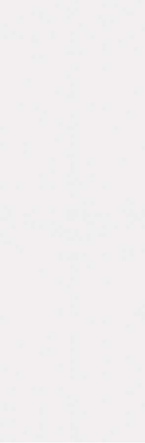 ABSOLUTE WHITE  250X760 SOUL WHITE MAT - (Euro/Mq 21,66)