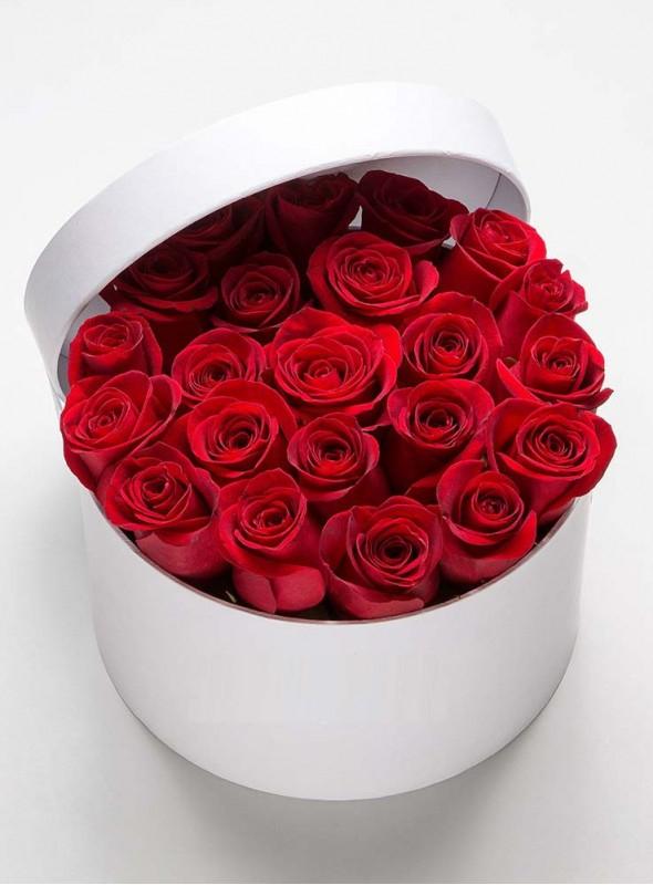 Scatola di 25 rose